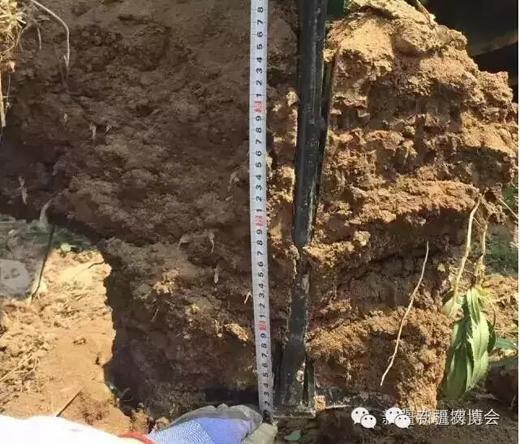 图为美国大平原深松过的土壤-新疆智能农业装备迎来采购热潮 附名单